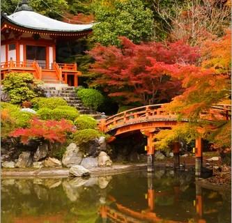 Il Giappone è meglio visitarlo in autunno. Ecco i perchè.