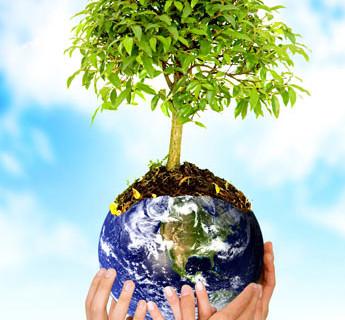 Un aiuto all'ambiente: l'esempio della famiglia Grisorio