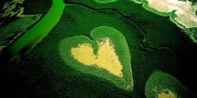 amare-ambiente