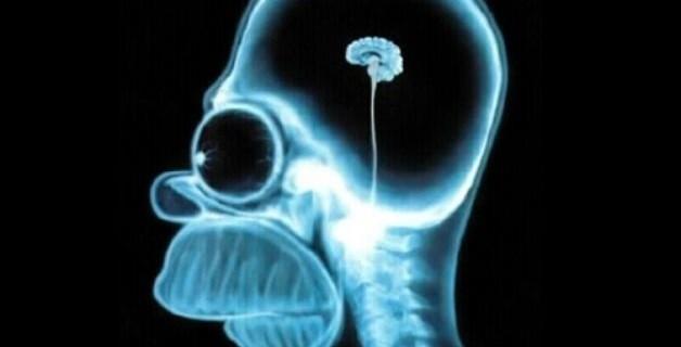 8 Cose Che Ti Rendono Più Intelligente