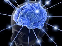 I 3 grandi misteri del cervello umano