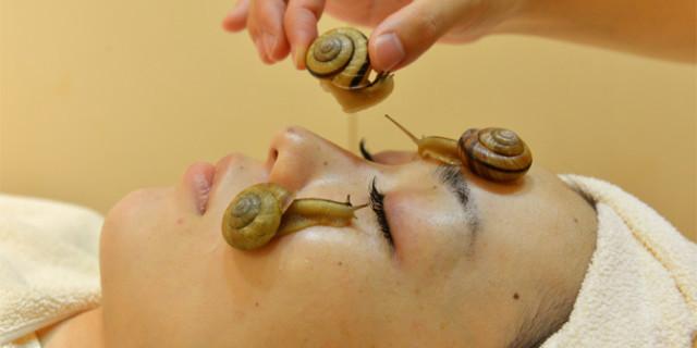 Lumache come elisir di bellezza. Ecco il nuovo trattamento per una pelle giovane. [VIDEO]