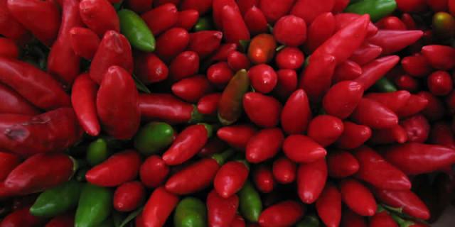 Cibi brucia grassi: ecco gli alimenti alleati del metabolismo