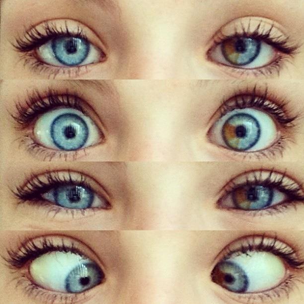 Wolf Eye Color Contacts Come Prendersi Cura De...