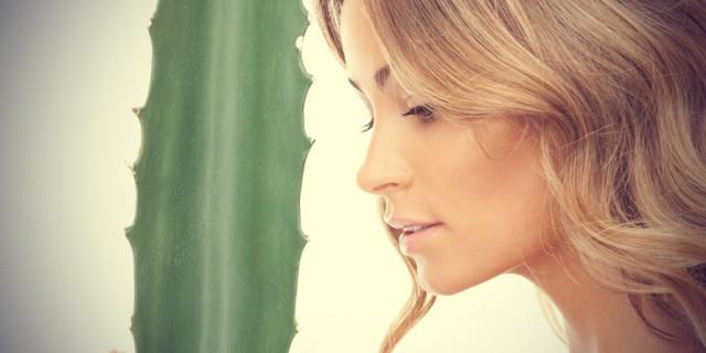 Aloe Vera: 5 Ottimi Motivi Per Non Farne Mai A Meno