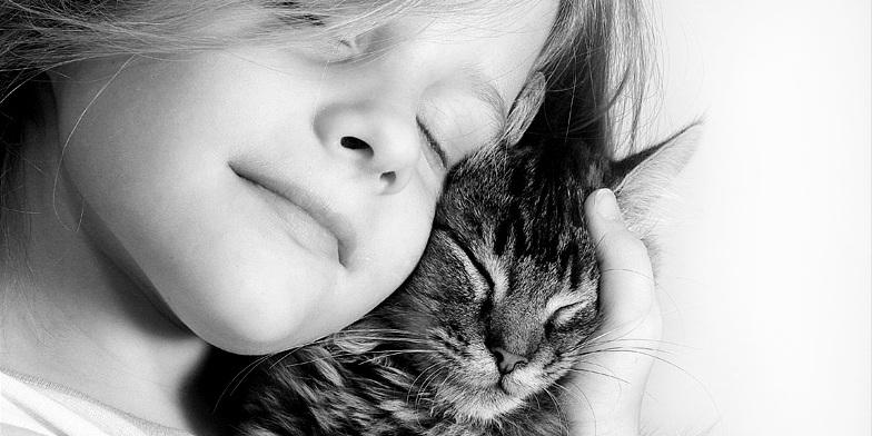 21 Dolcissimi Gatti Con I Loro Piccoli Padroni [FOTO]