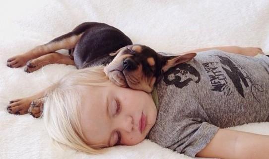 Il Primo Emozionante Incontro tra Animali e Bambini [VIDEO]
