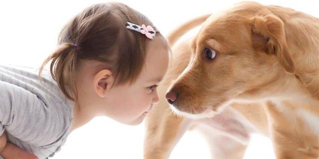 Perché i Cani Possono Aggredire i Bambini e Come Evitarlo