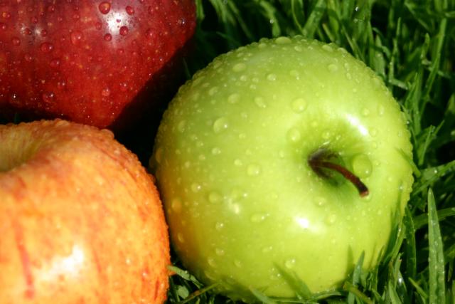 Alimenti che aiutano a vivere a lungo: le mele