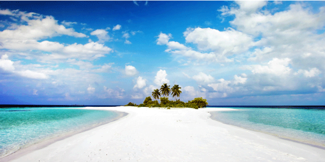 custode paradise island