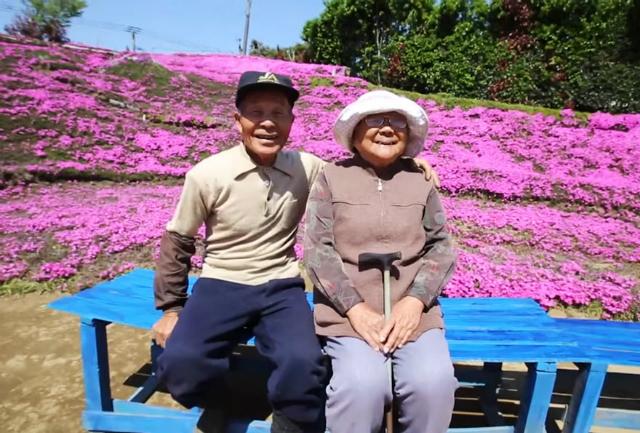 marito crea giardino moglie cieca