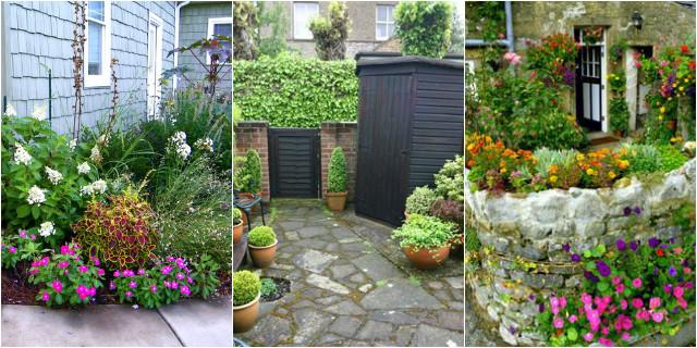 Piante da giardino i nostri consigli roba da donne for Nomi piante da giardino