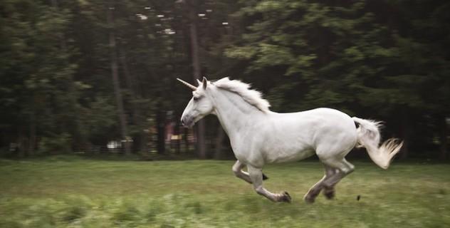 Gli Unicorni Sono Realmente Esistiti... Anche Se Erano Molto Diversi Da Come Li Immaginiamo