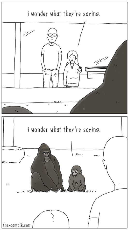 se gli animali sapessero parlare