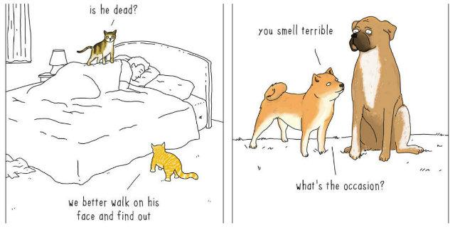 10 Vignette che Raccontano Cosa Direbbero gli Animali se Potessero Parlare