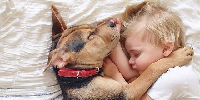 Ecco 13 cose che solo chi ha un cane e un bambino (o più) può capire!