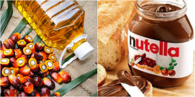 """Nutella difende l'olio di palma: """"Il nostro è sicuro. Ecco perché potete crederci"""""""