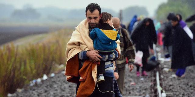 Immigrati, dai 35 euro al giorno al lavoro rubato: 8 convinzioni da sfatare
