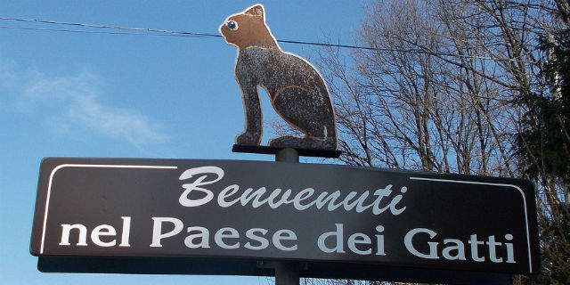 """In Italia esiste il """"paese dei gatti"""": siete curiose di sapere dov'è?"""