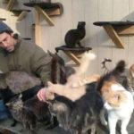 Perde il figlio e costruisce un rifugio per gatti in sua memoria. La storia di Chris