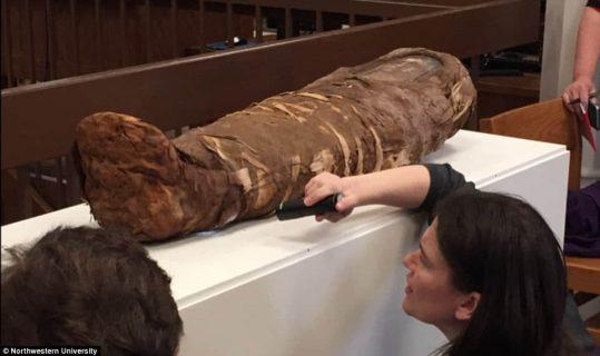 """Chi è la """"mummia bambina"""": l'identità della piccola morta 2000 anni fa ai raggi X"""