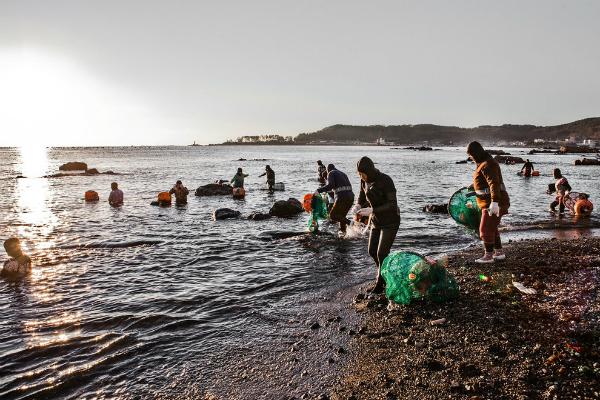 Chi sono le haenyeo, le ultime sirene del mare