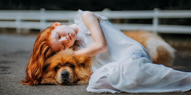 Il consulente del dolore che aiuta le persone a superare la perdita del loro animale