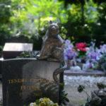 """Il cimitero degli animali dove dormono l'""""eterno risposo"""" cani e gatti vip"""