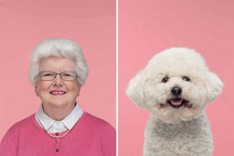 10 immagini che dimostrano che i padroni assomigliano ai propri cani