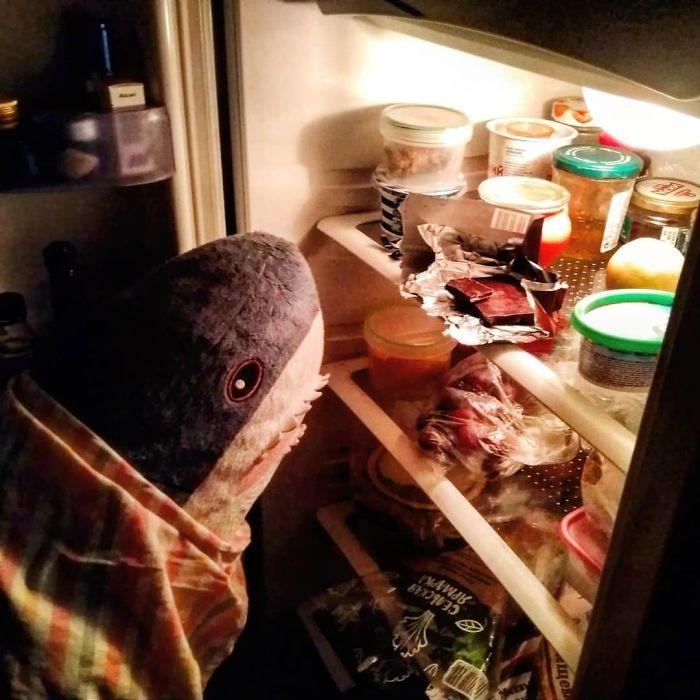 25 cose fuori dal normale che può fare uno squalo... se è un peluche Ikea