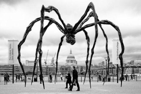 Il grande pene, la madre ragno e il mondo onirico di Louise Bourgeois