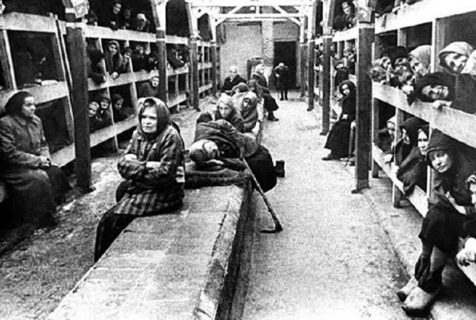 Bordelli, sterilizzazione ed esperimenti: le donne nei campi di concentramento