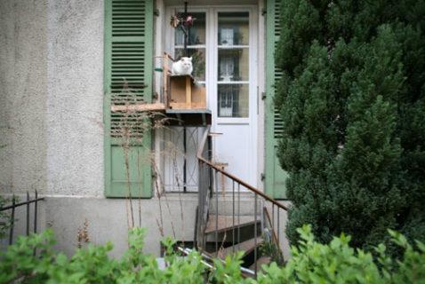 """16 soluzioni per """"gatti cittadini"""" che abitano ai piani alti"""