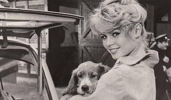 """Brigitte Bardot:""""BB è morta"""". Ma lui tentò di riportarla in vita"""
