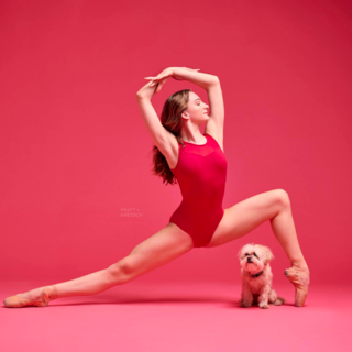 Danza con me: 20 ballerini e ballerine ballano con i loro cani