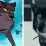La vera storia di Togo, il cane eroe senza il quale Balto non avrebbe potuto nulla