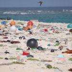 11 piccole cose che tutti noi facciamo e che danneggiano il pianeta