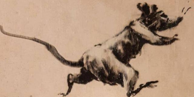 """""""Mia moglie odia quando lavoro da casa"""": il bagno invaso dai topi di Banksy"""