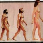 Ginarchia: la follia della supremazia delle donne sull'uomo