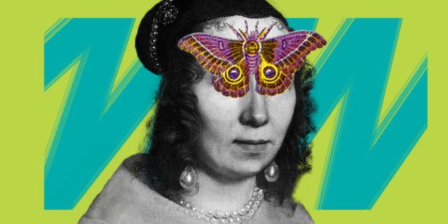 La storia vera di Maria Sibylla Merian che raccoglieva streghe e bestie diaboliche