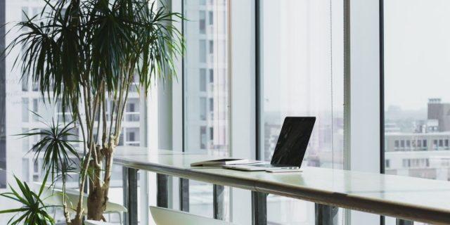 7 modi per rendere un ufficio sostenibile (e perché farlo)