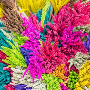 Quale di questi colori risalta di più ai tuoi occhi?