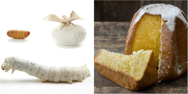 Nasce il primo pandoro italiano fatto con la farina... di insetti