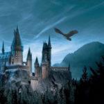 È in arrivo l'8° libro di Harry Potter, ma non è quello che stavamo aspettando