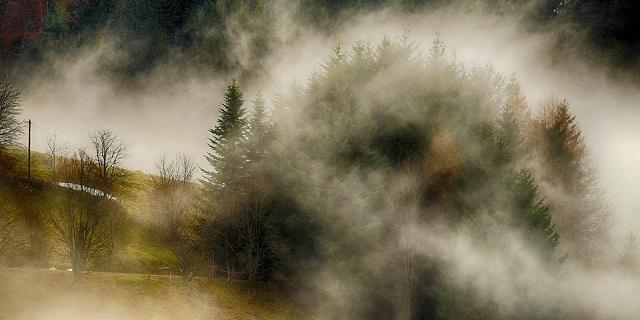 Inquinamento atmosferico, con la nebbia ancora più tossico