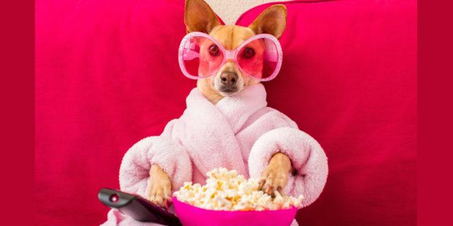 Cinema, i film da vedere nel weekend di Pasqua