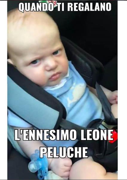 Anche Leone ha il suo account di meme come il piccolo George