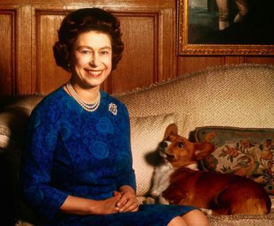 Il dolce e straziante motivo per cui la regina Elisabetta non avrà altri corgi