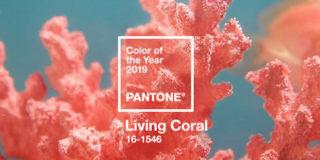 living coral colore pantone 2019