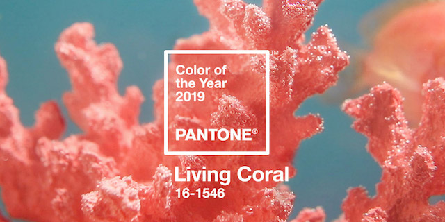 Il 2019 si tinge di Living Coral, il nuovo colore Pantone dell'anno